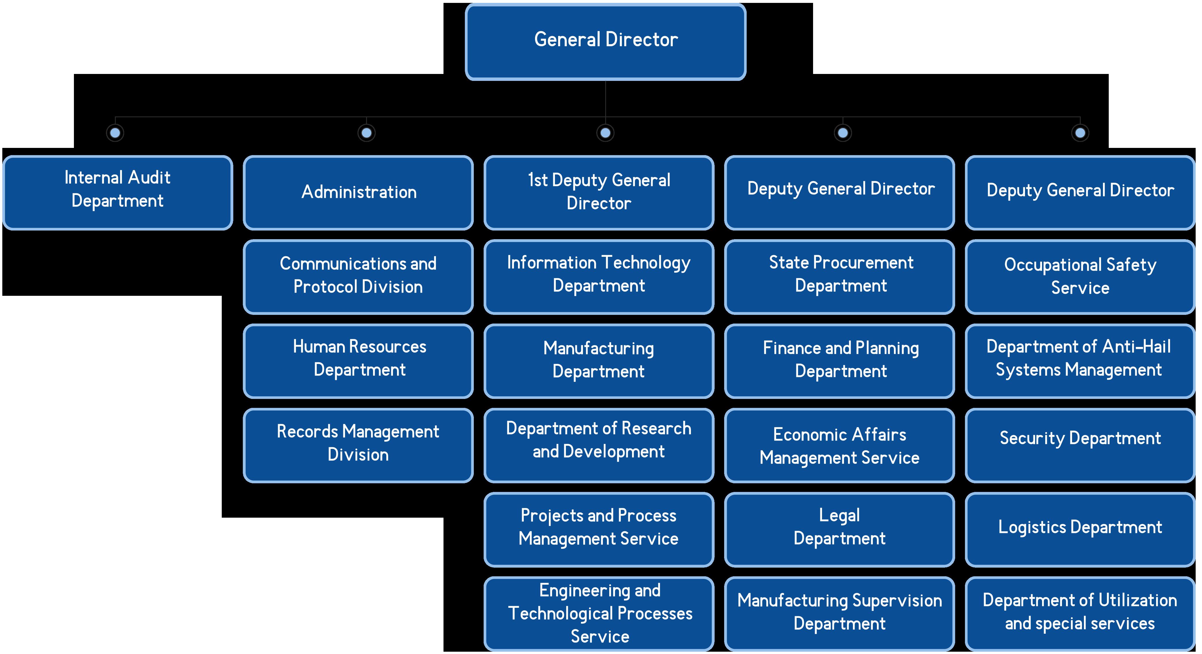 DELTA ORGANIZATIONAL STRUCTURE